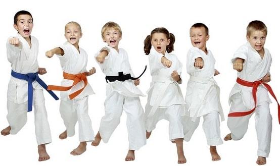 võ karate